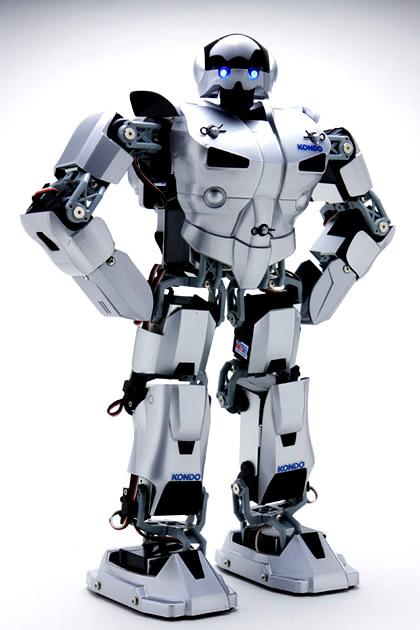 Robo Japones