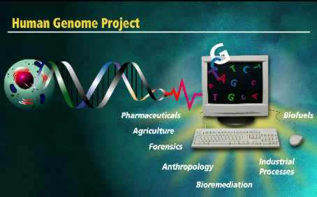 Projeto Genoma