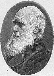 Titio Darwin