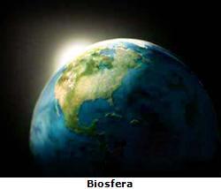 O conjunto de todos os ecossistemas