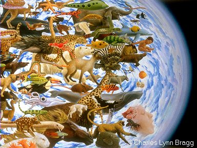 biodiversidade3