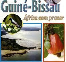 Guiné3
