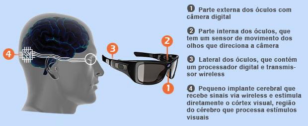 grafico-olho-bionic-20131006-original
