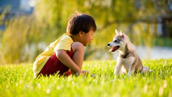menino-crianca-cachorro-cao-20130717-size-598