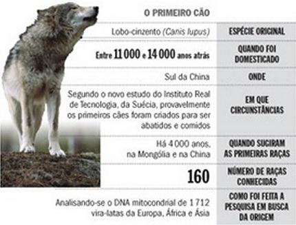 Evolução dos cães[3]