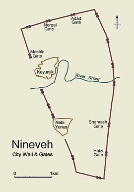 Nivive mapa