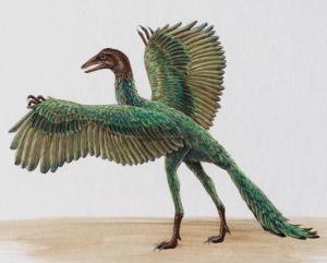 Archaeopteryx1140553061
