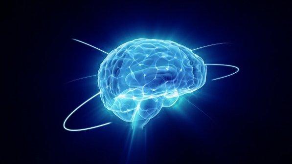 cerebro-2013-06-12-size-598