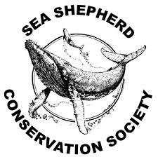 sea shepard