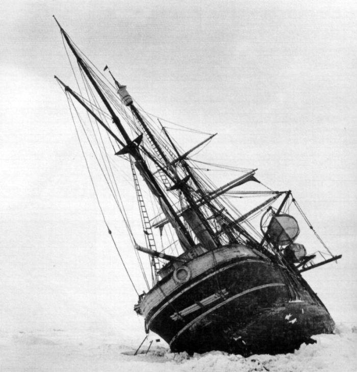 navio endurance