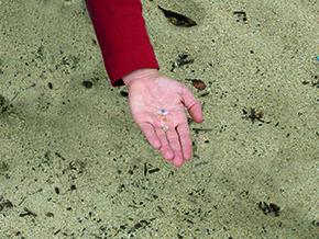 Praia limpa é coisa rara