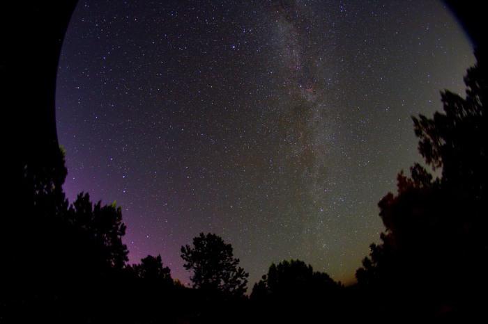 aurora-chris-schur