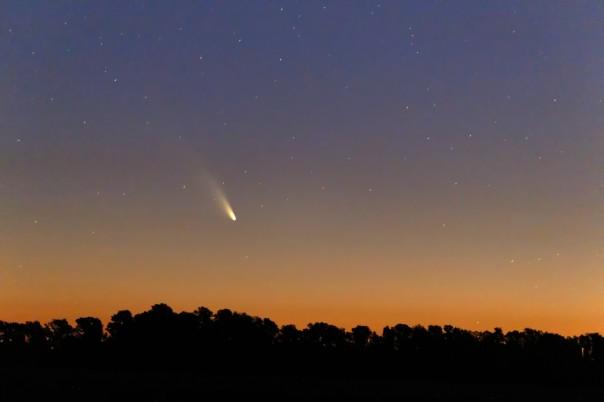 cometa_-_luis_argerich