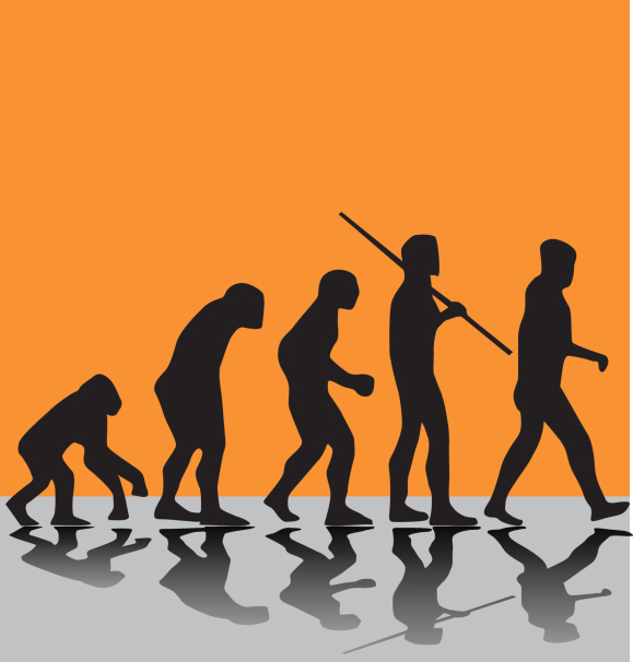 evolução hm