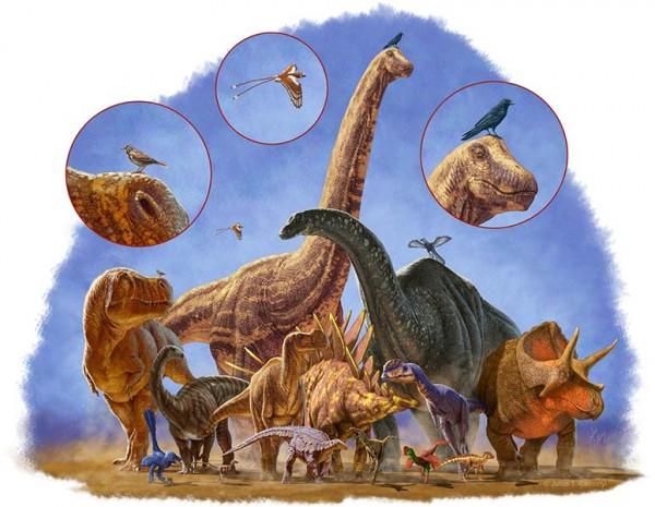 como as aves sobreviveram a extincao dos dinossauros