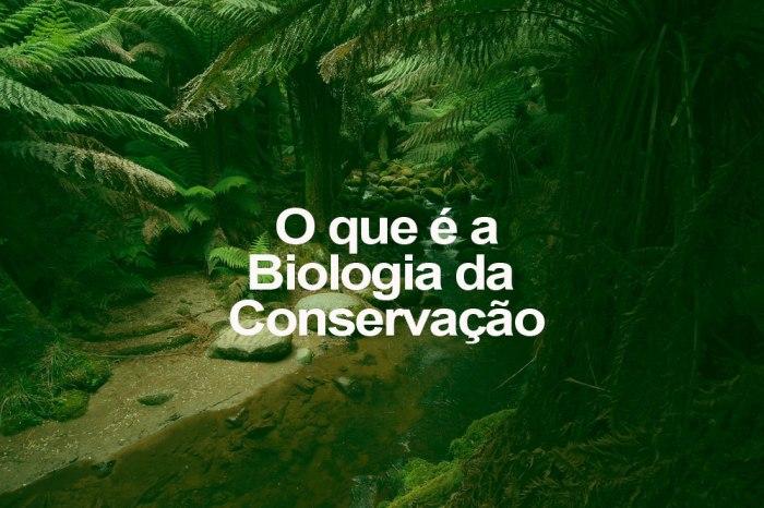 o-que-e-biologia-conservacao