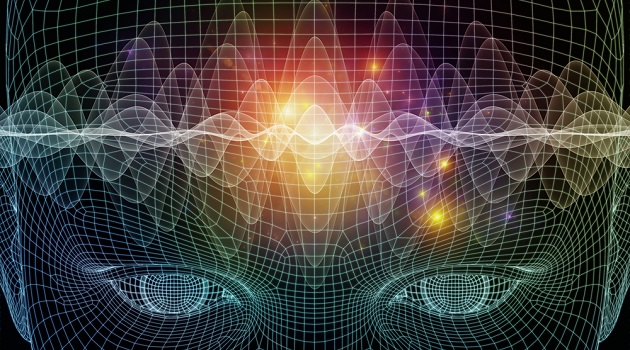cerebro-conectado-agsandrew-shutterstock.com_