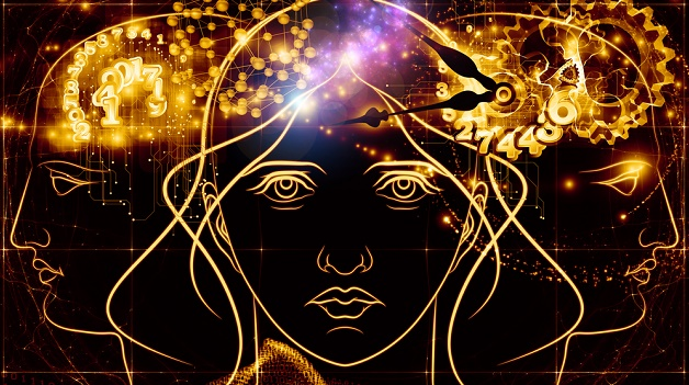 cerebro-mulher-pancada-cabeca-noticias-agsandrew_-_shutterstock.com_
