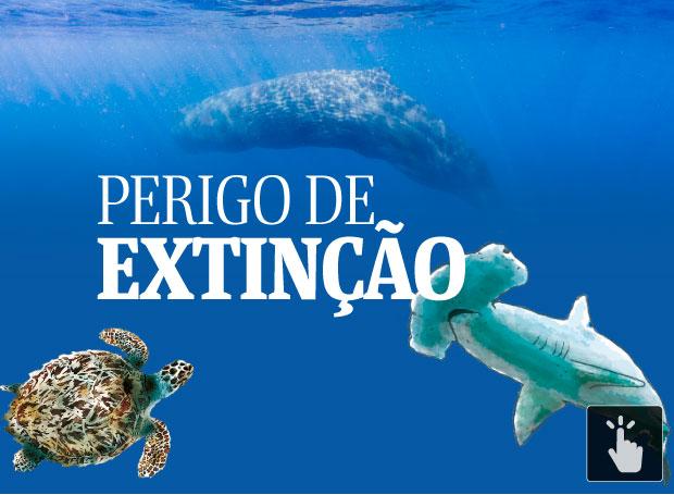 extinçao