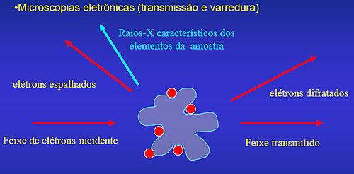 Microscopia_eletronica_esquema