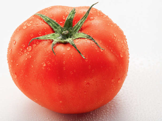tomate-20130829-001_original