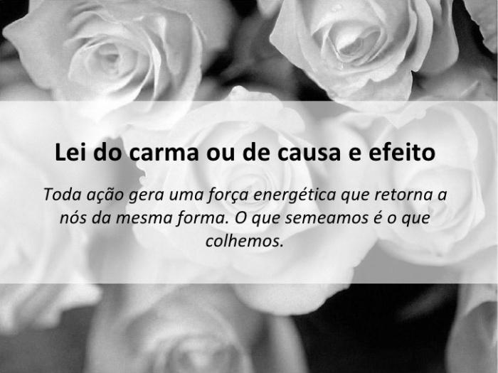 lei-do-carma-1-728