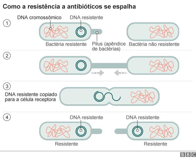 antibiotic_resistance_191115_portuguese