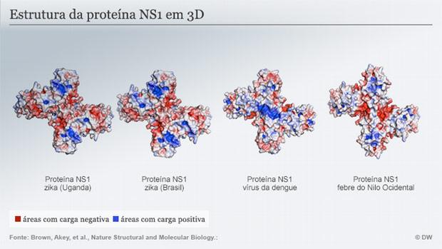 zika grafico