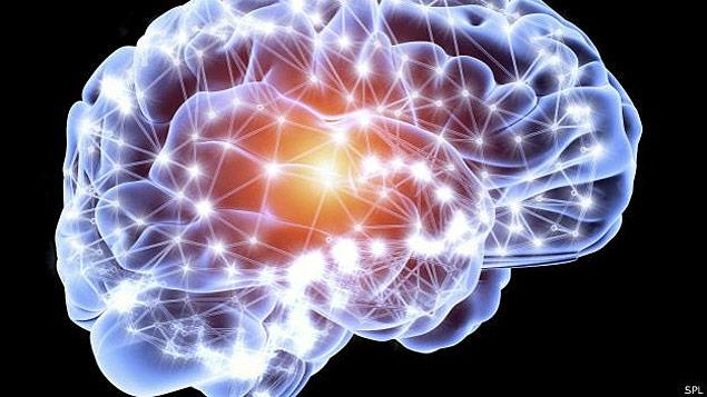 cerebro-mutante