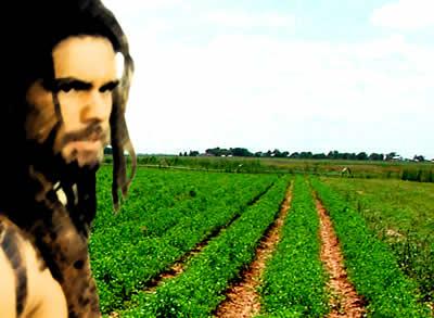 Agricultura Evolucao - H DO MUNDO