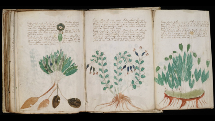inteligencia-artificial-decifrar-manuscrito-Voynich-2