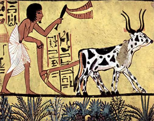 economia-egipcia-era-agricultura-53f7a674372c1