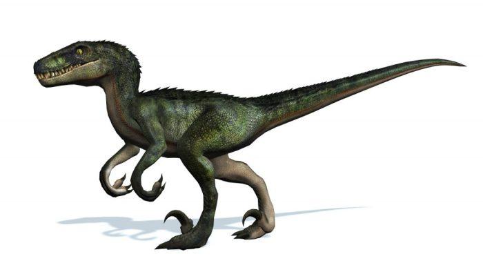 velociraptor_302757089-1000x563