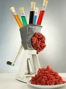 carne-de-laboratoio-225x300