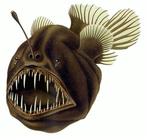 peioxe pescador